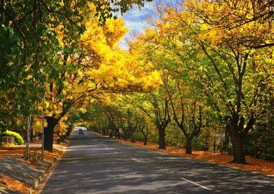 Hahndorf - Adelaide Hills