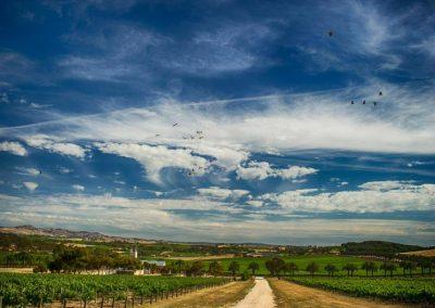 Barossa Valley Sky